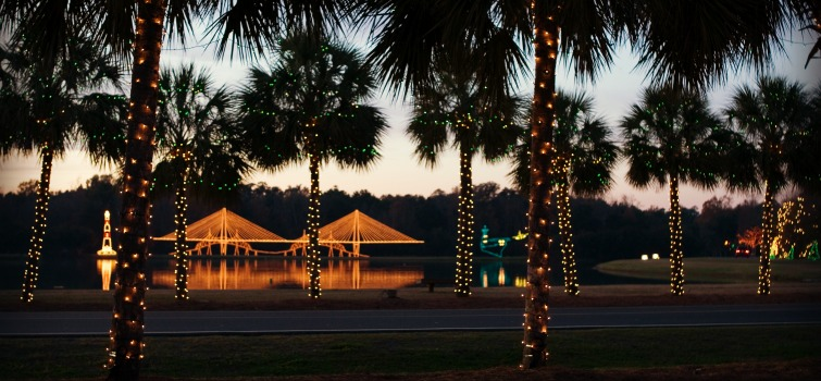holiday - Get In The Holiday Spirit With These Top Light Displays In Charleston